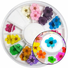 12 Color Real Dry Dried Flower for 3D UV Gel Acrylic False Tips Nail Art Hot