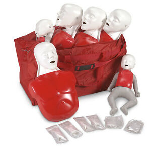Life/form® Basic Buddy™ Convenience Pack Training CPR Manikins- LF03732U