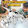 Boys Kids Gift Electric Dinosaur Model With LED Light & Sound Educational Toys