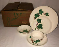 20 PC Joni GREEN IVY* DINNER SET w/BOX * PLATES * BOWLS * CUPS / SAUCERS*