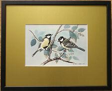 Basil Ede, 20''x16'' frame, Bird framed wall art, Great Tits print, garden bird