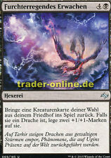 2x Furchterregendes Erwachen (Fearsome Awakening) Fate Reforged Magic