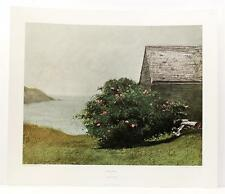 Vintage JAMES WYETH Island Roses Garden Floral Americana Realism LITHO NY #235T