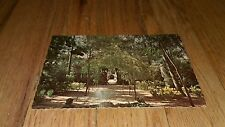 Vintage The Duke Gardens Somerville New Jersey Italian Garden postcard Dexter NJ