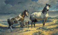 Windy Ridge by Nancy Glazier Horses Print 33x20