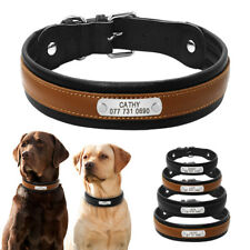 Personalised Dog Collar Leather Padded for Medium Large Dogs Custom Engraved