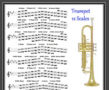 LEAD TRUMPET POSTER - 12 SCALES - EVERY NOTE FOR ANY KEY !