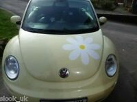 Huge Daisy Flower sticker for VW Bug Camper Van Beetle Bongo Bus 500mm wide !
