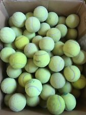 30 Used Tennis Balls
