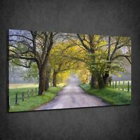 BEAUTIFUL SPRING SCENIC LANDSCAPE TREES ROAD BOX CANVAS PRINT WALL ART PICTURE