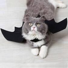Halloween-Schläger-Flügel-Kleidung für Katzen-Hündchen-lustiges Kostüm Gut