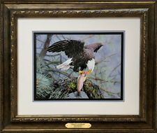 """""""Liberty's Rainbow"""" Bald Eagle Framed Artist Proof Giclee Print by Roby Baer"""