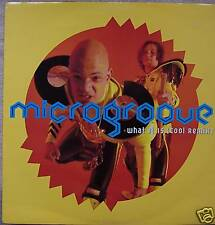 "MICROGROOVE - What It Is ~ 12"" Single PS"