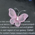 50 PCS Wired Mesh Stocking Butterfly w/ Glitter & Gems Wedding Craft Decor 3x2cm