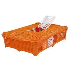 Geflügeltransportkiste Tauben/Wachteln orange Transportbox Taubenbox Kükenbox