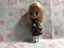 Littlest Pet Shop Blythe Doll B2 Buckles & Bows Sooo Cute!!!