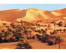 Trefl 26062. Puzzle 1500 piezas. Desierto del Sahara