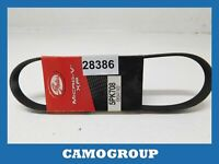 Belt Service V-Ribbed Belt Gates FORD Escort Fiesta Peugeot 605 Citroen XM