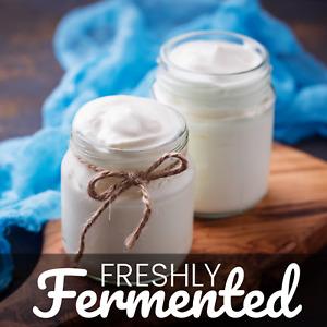 Certified Organic Cream Top Yoghurt Starter