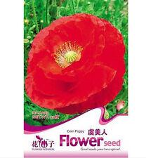 FD1394 Poppy Seed Papaver Rhoeas Flowers Seed ~1 Pack 100 Seeds~