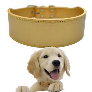 Puppy Pet Dog Collar 2Inch Wide Leather Collar Adjustable Buckle Size M L XL XXL