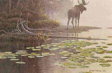 "Robert Bateman - ""Moose at Water's Edge"" limited edition print"