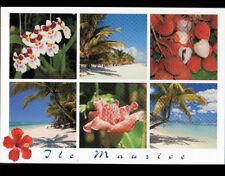 ILE MAURICE (OCEAN INDIEN) FRUITS / FLEURS / PLAGES animées