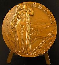 Médaille allégorie : l'énergie par l'eau A.N.R.O.C barrage hydroélectrique medal