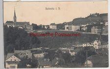 (93192) AK Sebnitz, Sachsen, Stadtansicht, Katholische Kirche 1911