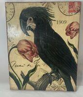 """Robin King Designs Decoupage Art Canvas 11"""" x 14"""" Beautiful Parrot Bird Design"""