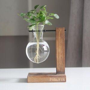 Hydroponic Plant Vases Flower Pot Transparent Vase Wooden Frame Tabletop Planter