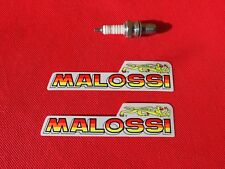 Pair of Malossi stickers