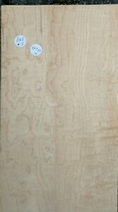 LARGE CONSECUTIVE SHEETS OF BIRDS EYE MAPLE VENEER 86 X 20 CM MARQUETRY BMS#7