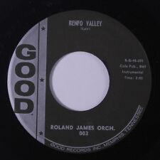 ROLAND JAMES: Renfro Valley 45 (guitar instro) Oldies