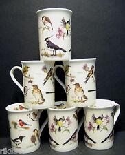 6 A SET OF SIX BIRDS MIX FINE BONE CHINA MUGS CUPS BEAKERS TO CLEAR