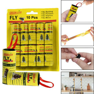 Fly Insect Catcher Paper Sticky Glue Strong Roll Bug Trap Killer Tape Strip