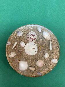 Vtg Lucite Resin Sand Dollar Shells Star Fish Beach Sand Ocean Hot Pad Trivet
