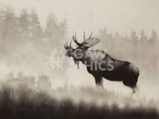Bull Moose by Cole Johnson Art Print Wildlife Hunting Cabin Lodge Poster 20x26