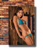 Art Shelby Chesnes - Sexy Hot Model Girls -20x30 24x36in Poster - Hot Gift C2565