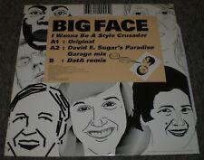 "I Wanna Be A Style Crusader Big Face~2007 France Import House Electro 12"" Single"