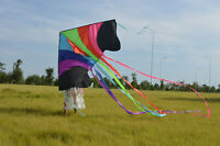 Large delta kite with long tail for kids and adults single line easy to fly