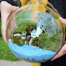 Creative Glass Ball Vase Flower Plant Pot Terrarium Container Home Office Decor