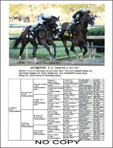 KENTUCKY DERBY & BREEDERS CUP CLASSIC WINNER  RACE HORSE AUTHENTIC PICTURE PEDIG
