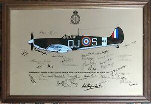 RAF Supermarine Spitfire Multi Pilot Signed ( Facsimile) Picture Mirror - Framed