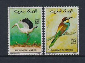 Morocco - 1991, Birds set - MNH - SG 813/14
