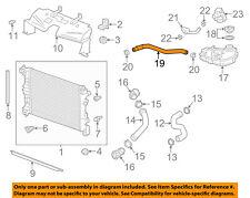 GM OEM Radiator Coolant-Recovery Tank Bottle Overflow Hose 96968691