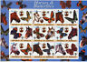 Somalia 2003 MNH Horses & Butterflies 9v M/S Scouting Animals Butterfly Stamps