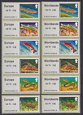 WINCOR TYPE II RIVERS EU & WW 60g RATES IN MATCHED SETS/6 FS73b FS76b POST & GO