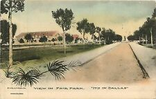 Texas, TX, Dallas, View in Fair Park Early Albertype Co Postcard