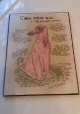 Vintage Dick Twinney Know Your Dog The Afghan Hound Plaque - 1980s